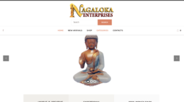 Nagaloka Enterprises Nagpur